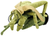 hape beleduc grasshopper glove puppet build